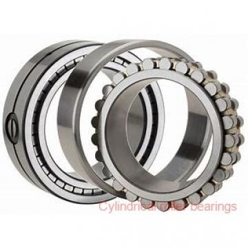 FAG NJ205-E-TVP2-C3 Cylindrical Roller Bearings