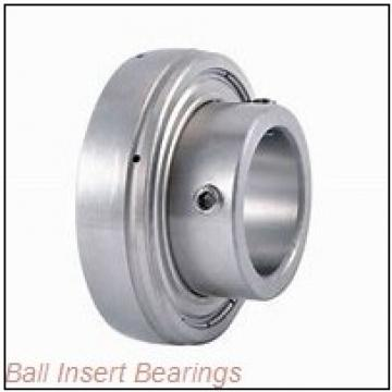 INA RAE20-NPP-B Ball Insert Bearings